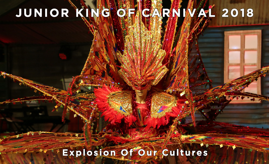 Francois Illas New Tradition: National Carnival Commission (NCC