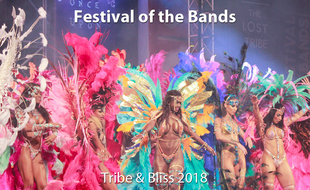 Festival of the Bands: Tribe & Bliss 2018